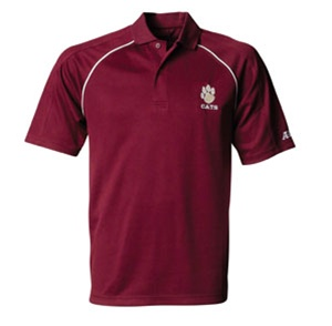 Custom embroidered a4 polo shirts no minimum order for Cheap custom embroidered polo shirts
