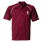 Custom n3168 Embroidered Polo Shirts